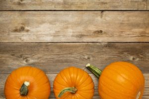 row of orange pumpkins